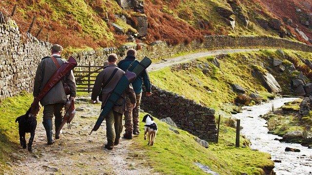 chasseurs sur un sentier avec leurs chiens