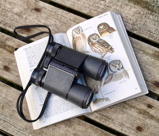 jumelles d'ornithologie noire sur un livre