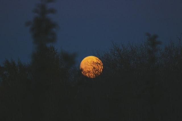nuit noire avec pleine lune